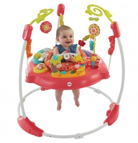 Jumperoo Pétales de Rose Fisher Price