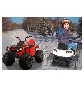 Ride-on Protector 12 Quad V